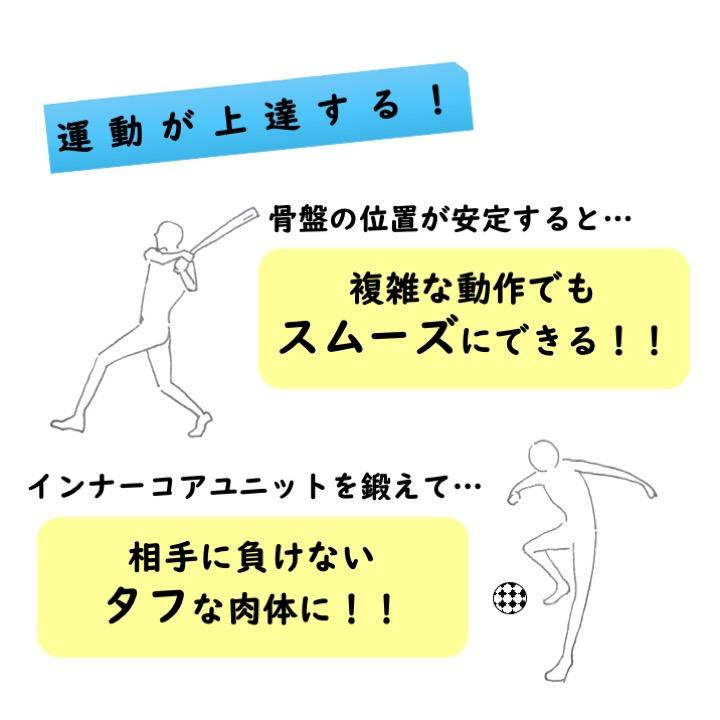 骨盤と運動