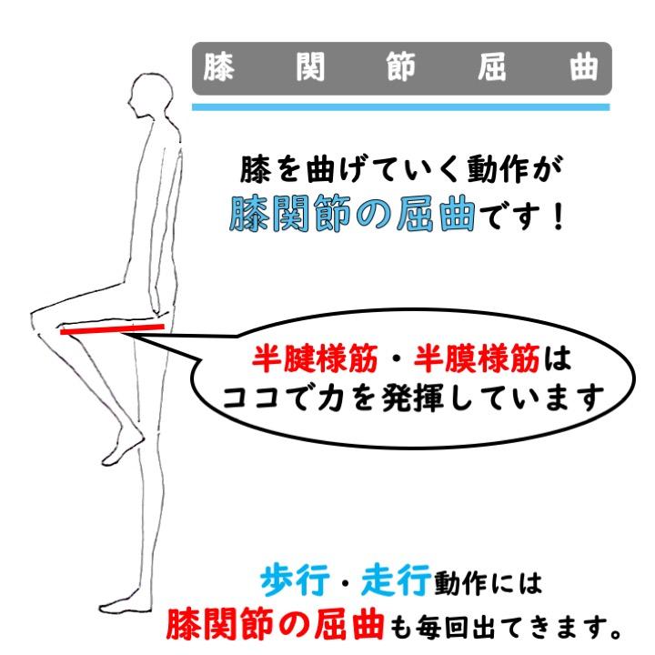 膝関節屈曲
