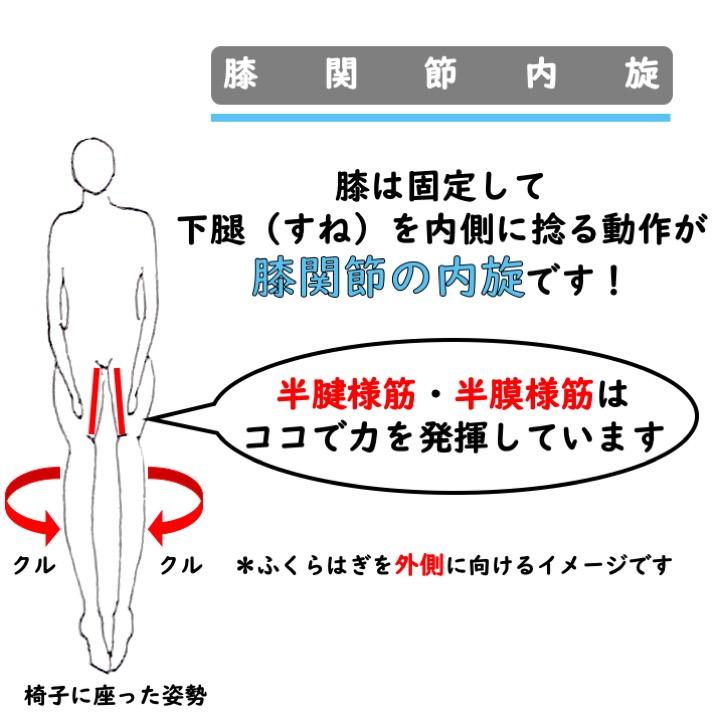 膝関節内旋