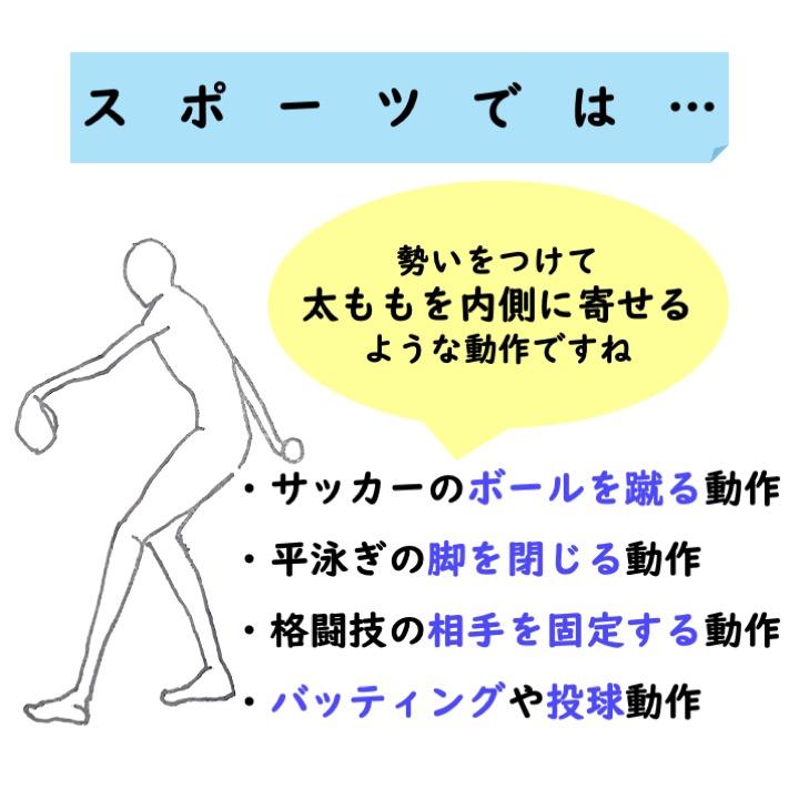 スポーツ動作と大内転筋