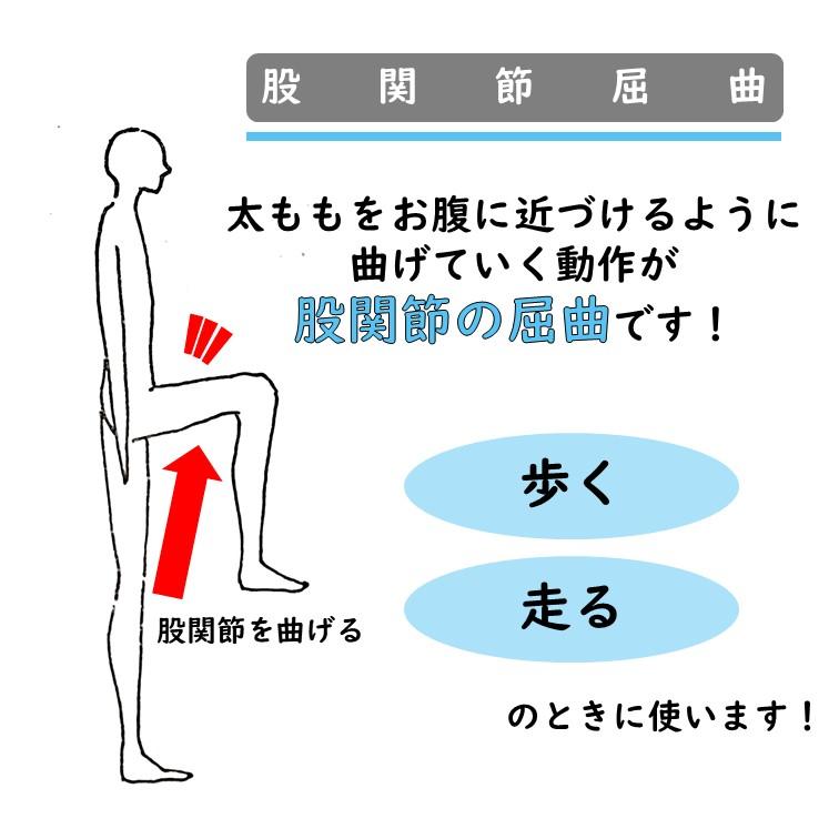 股関節屈曲